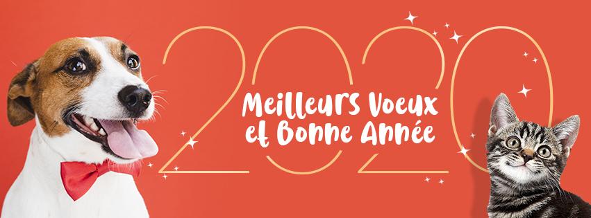 SPA_facebook_2020_cover_bonne_annee